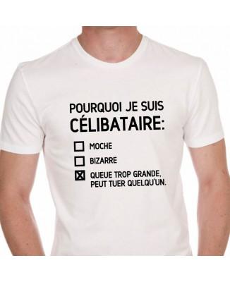 Tee shirt Pourquoi Je Suis Célibataire