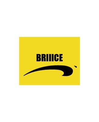 "T-shirt humour ""Briiice"" Brice de nice"""