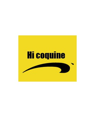 "T-shirt humour "" Hi coquine"" by brice de nice"
